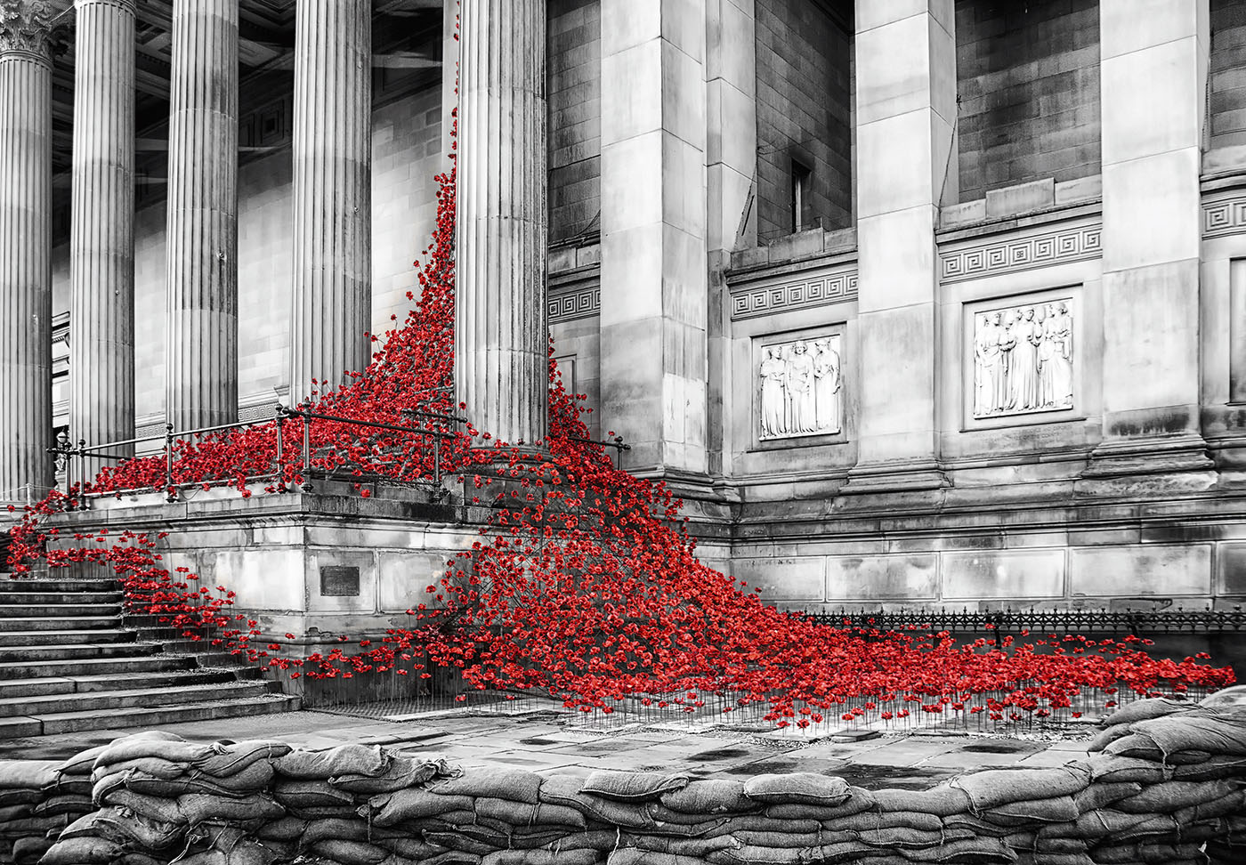 St Georges Hall Poppies.jpg